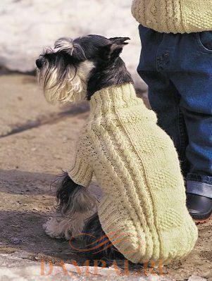 вязаная одежда для собаки