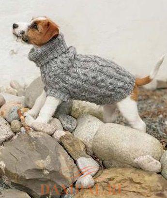 Пальто для собаки «The Lookout»